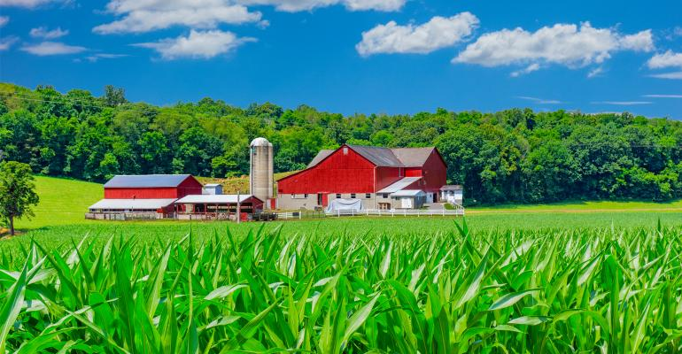 red barn, cornfield and rolling hills under blue sky