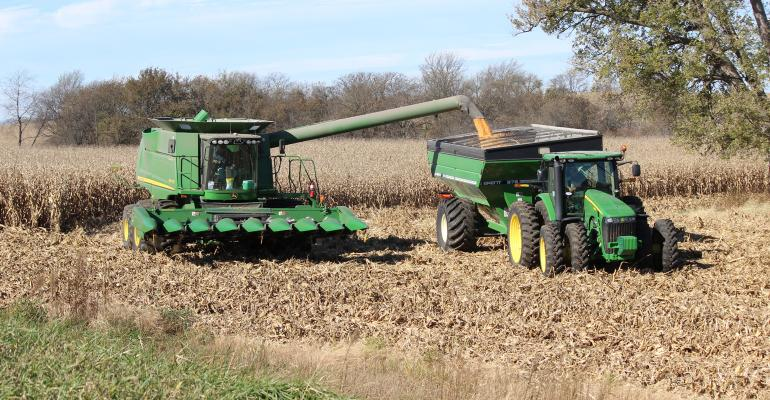 corn being harvested by combine
