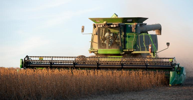 Soybeans being harvested