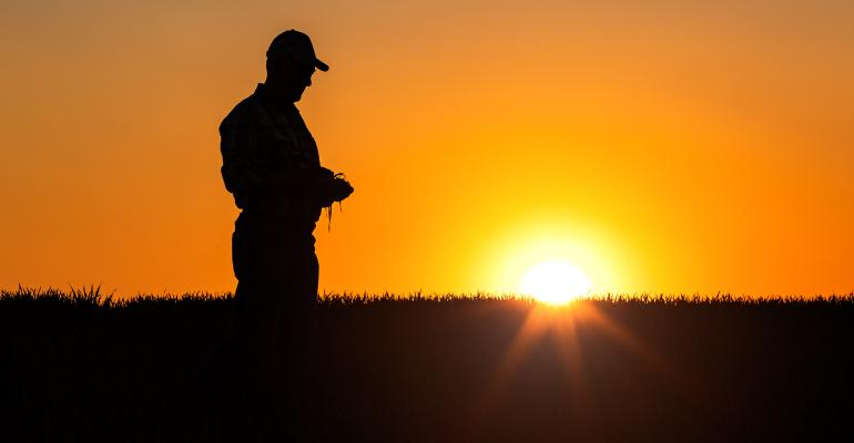 Farmer standing in field at sunset