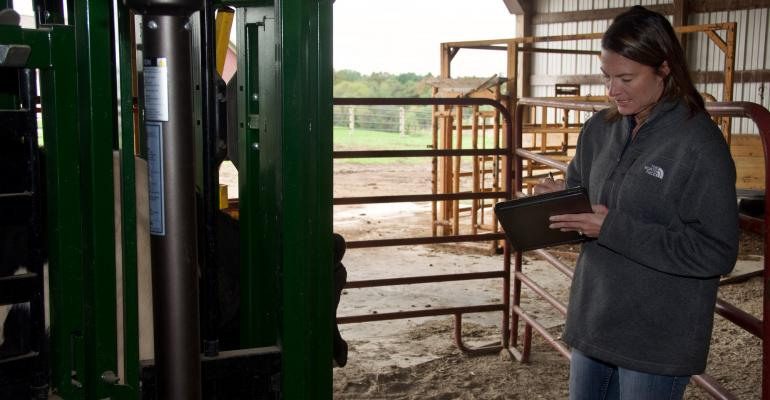 Shannon Eldrige in her cattle barn