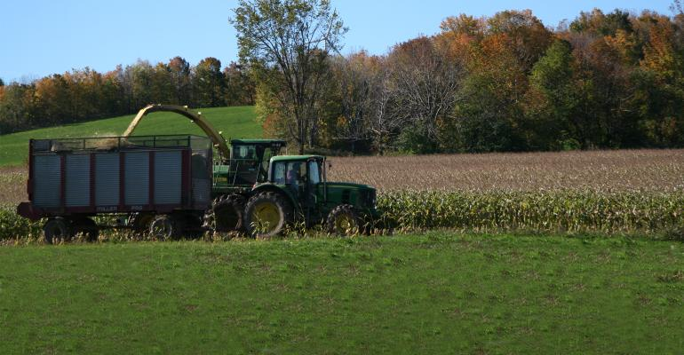 Corn harvest in New York's North Country