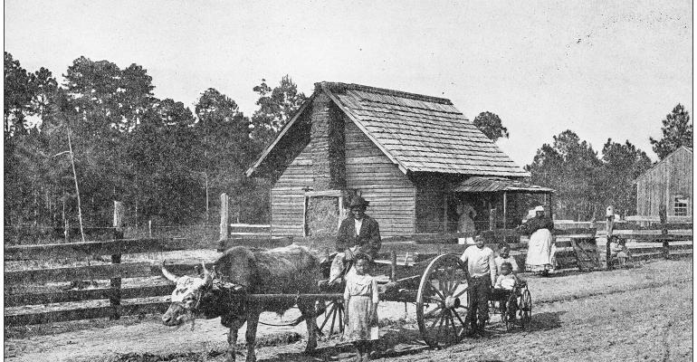 Old south agricultural scene