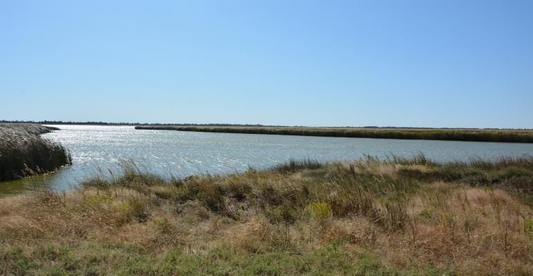Quivira National Wildlife Refuge water way