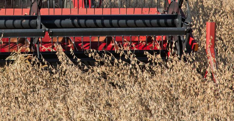 red combine head harvesting soybeans