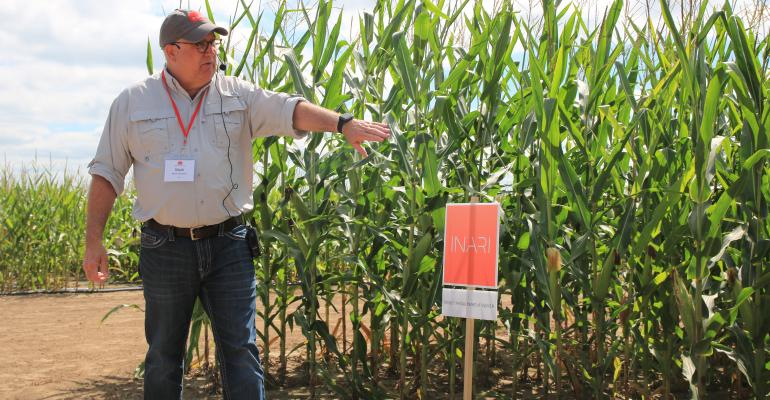 Mark Stowers talking in front of rows of corn