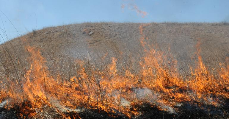 Miles of flames licking across the countryside in the Flint Hills of Kansas in April