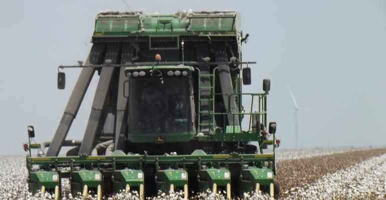 2018-cotton-harvest-deer-harvest-hawkes