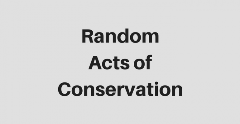 4.16 Random Acts of Conservation.