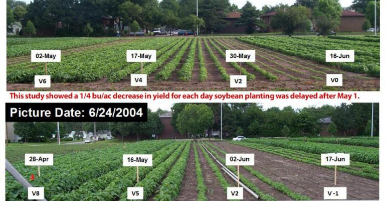 4.23 soybean-planting-date-trials-2003-2004