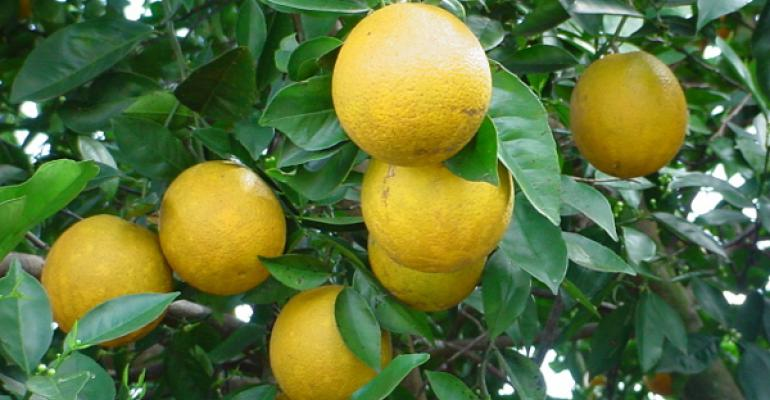 New citrus research facility dedicated in South Texas