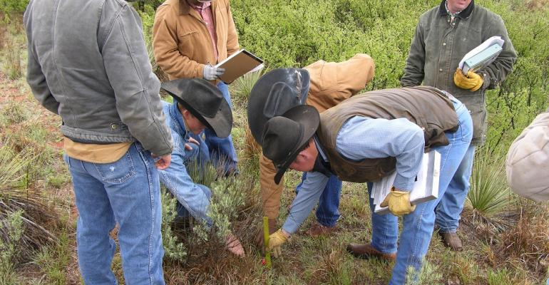 Ranchers looking at forage and soil