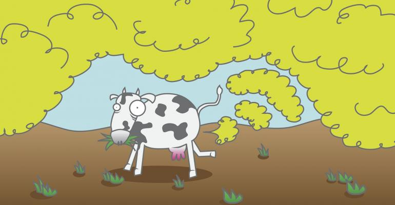 Cow gas destroying the world