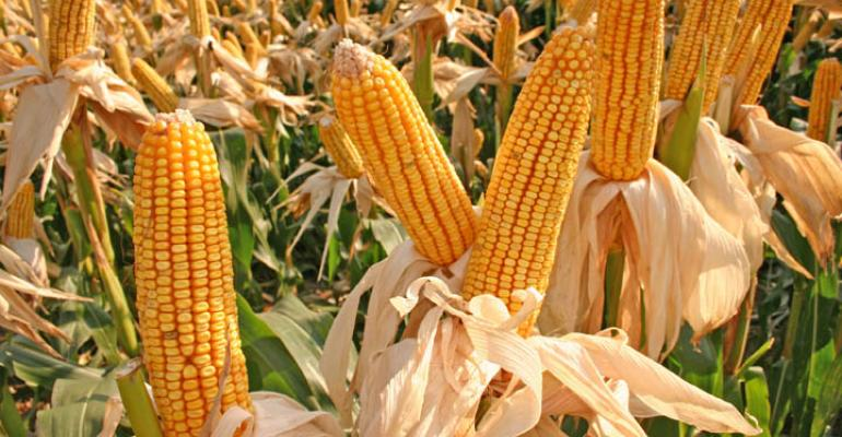 Good, bad, ugly of high corn yields in 2011
