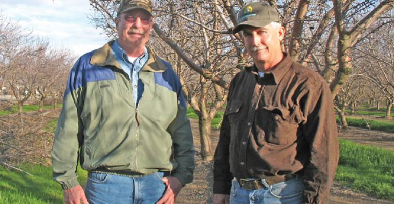 Sacramento Valley farming partnership built on paddies and orchards