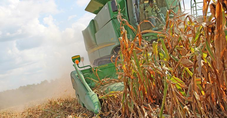 Corn pickers harvest grain from Mid-South field