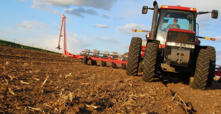 corn planting, input costs