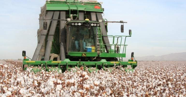 Arizona upland cotton production up 33 percent