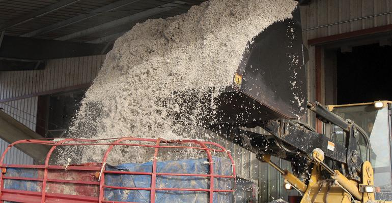 DFP-Brad-Robb-Cottonseed-Pouring.jpg