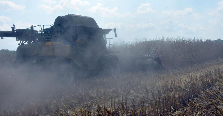 DFP-RonSmithCorn-Harvest-Hot-Dusty.jpg
