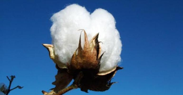 Cotton not the enemy after all?