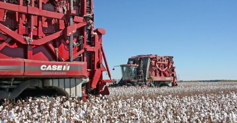 High cotton prices – will consumers push back?