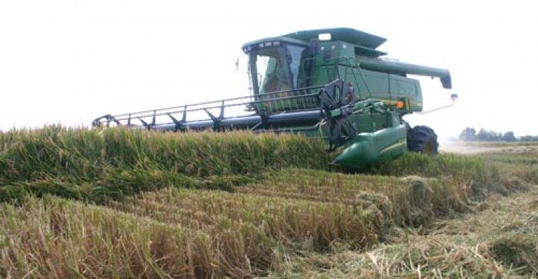 Production estimates fall for corn, beans and rice
