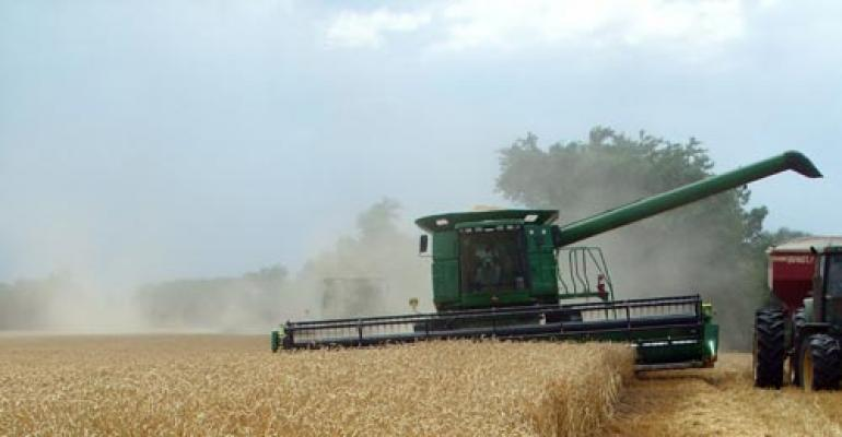 Wheat harvest: rains, dessicants and dry-down