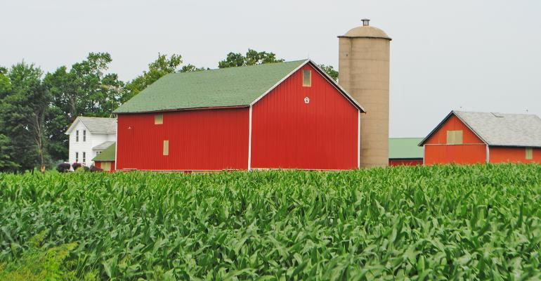red barn and outbuildings