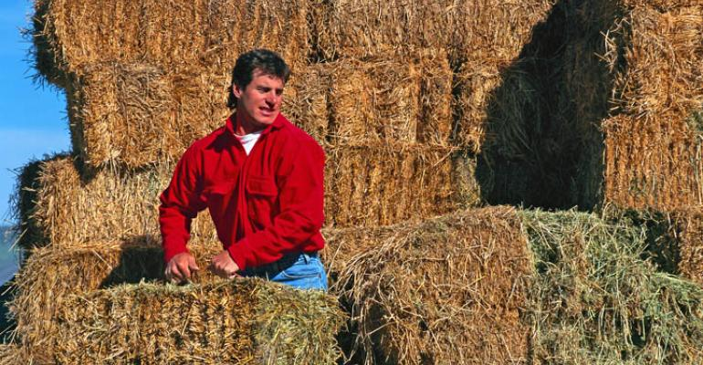 Young farmers stuck between high commodities and higher farmland