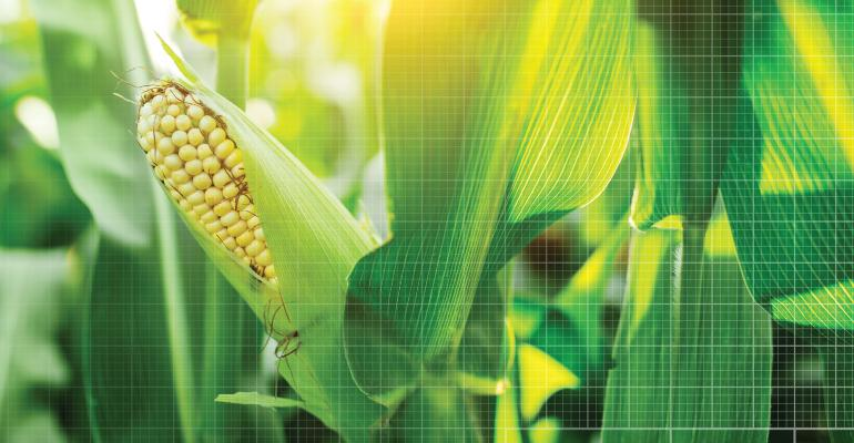 crop modeling offers opportunity