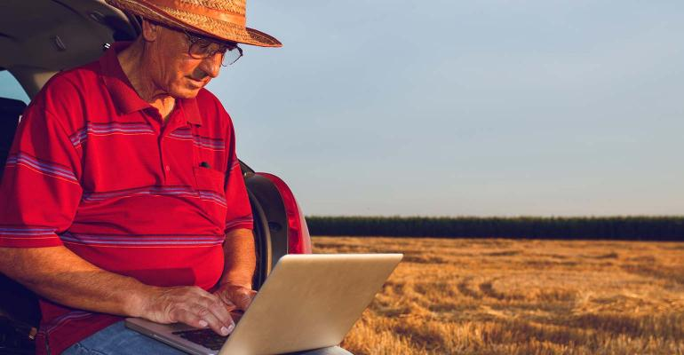 Farmer examining income on laptop after the harvesting of wheat.