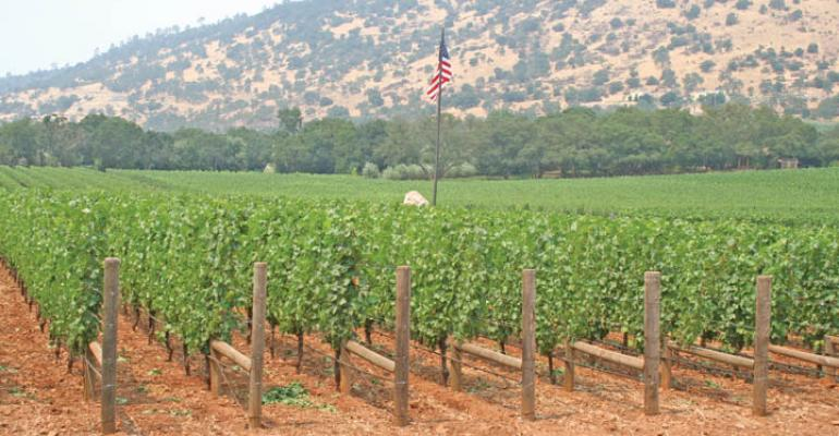 Potassium nutrition in vineyards