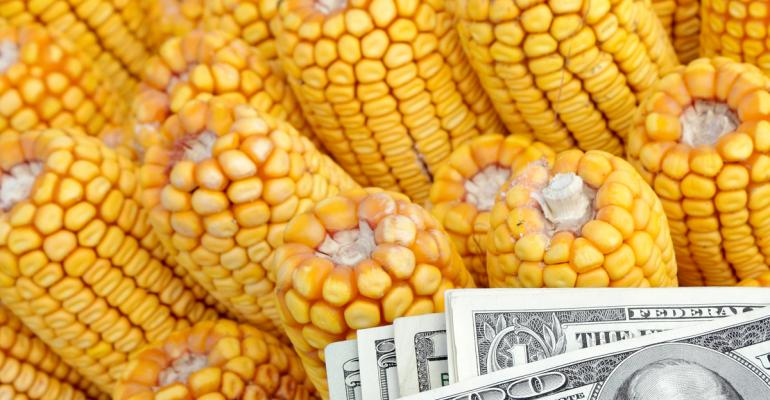 Ears of dent corn with pile of U.S. paper bills