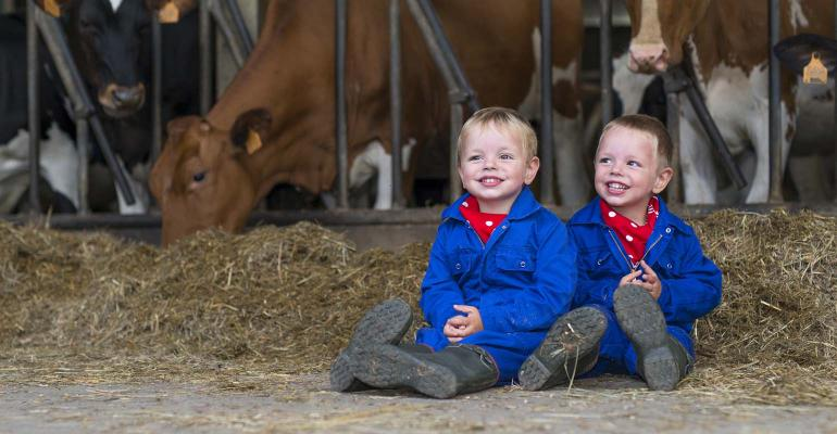 kids on the farm - sitting in feed in free-stall dairy barn