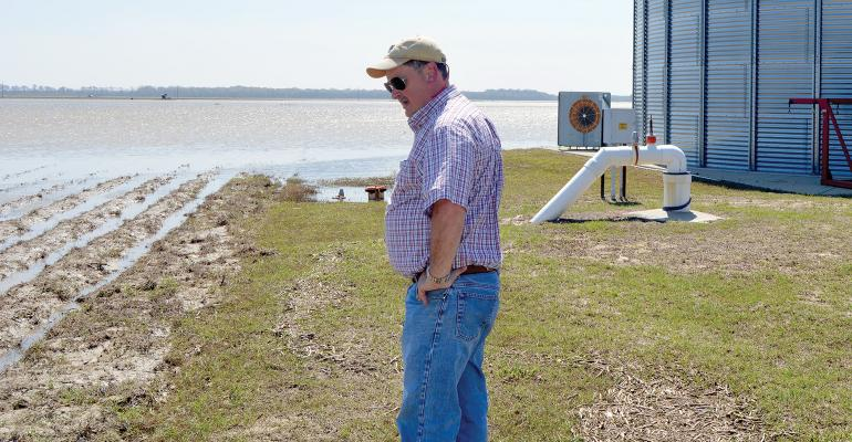 LSU AgCenter county agent Bruce Garner surveys a field in West Carroll Parish that flooded following heavy rains in March 2016.