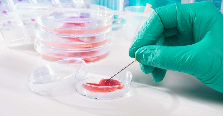 Meat cultured in laboratory conditions