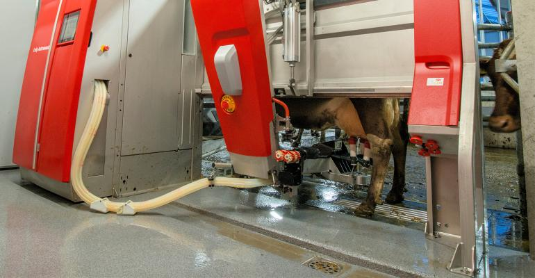 Lely's A5 automated dairy milking and feed-pushing system
