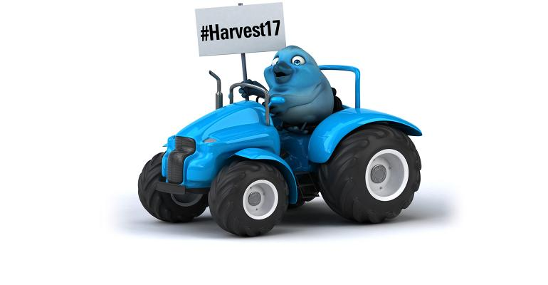 blue bird on blue tractor