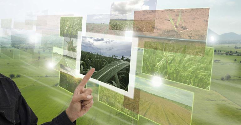 Picture of monitors with ag scenes floating in front of pasture.