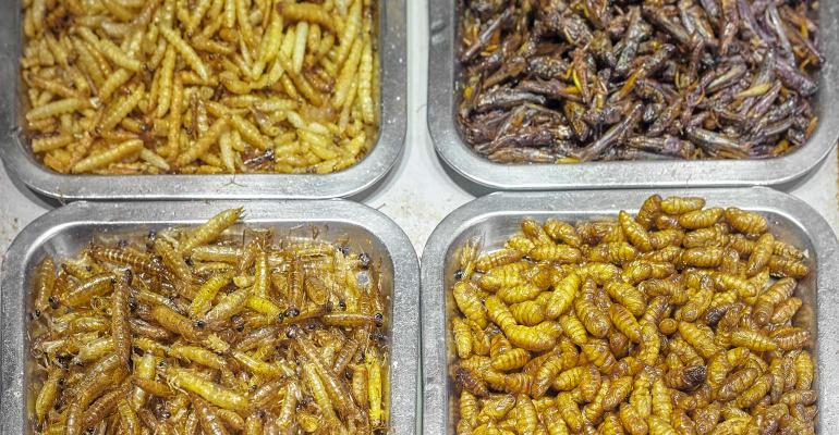 Close up picture of fried edible insects, shallow depth of field.