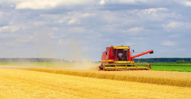 Harvesting wheat on summer day.