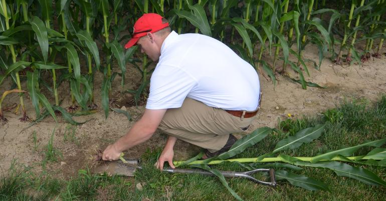 Derek Reusser inspects seed depth