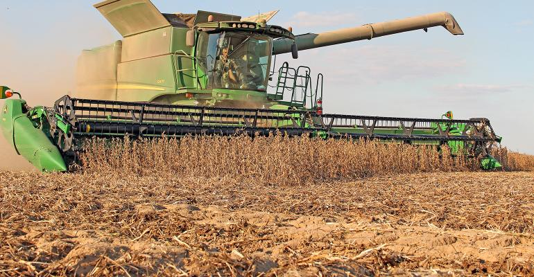 Soybean harvest, combine