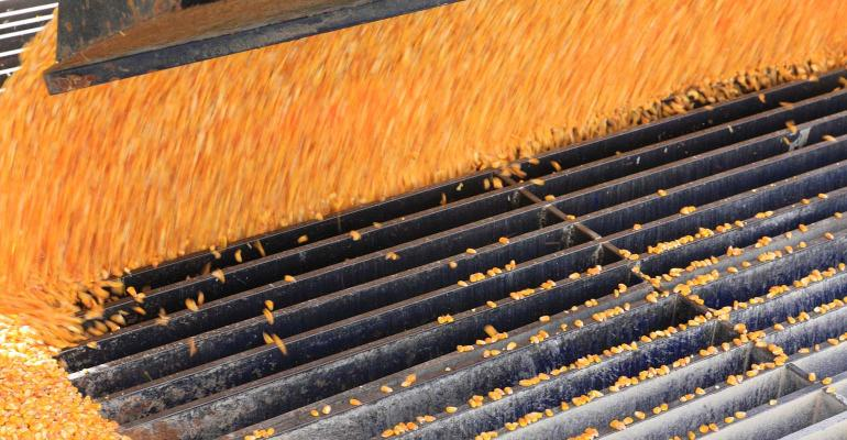 Corn flowing into grate.