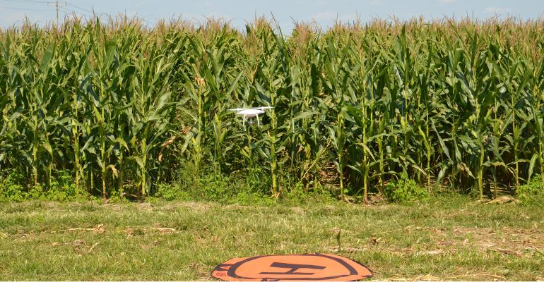 UAV in front of cornfield