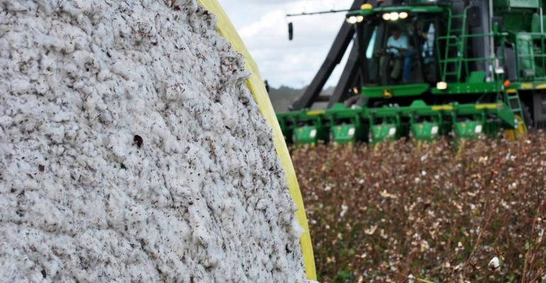cotton-harvest-2017-ga-4_1.jpg