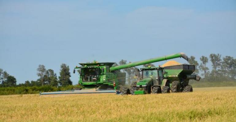 Hybrid rice harvest in Arkansas in 2016 Fewer acres of the hybrids will be available in 2017
