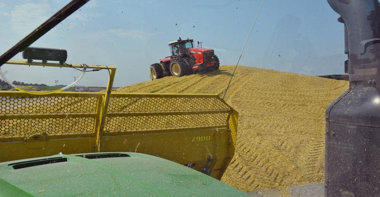 corn silage packing