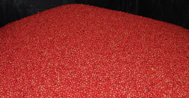 red treated soybeans